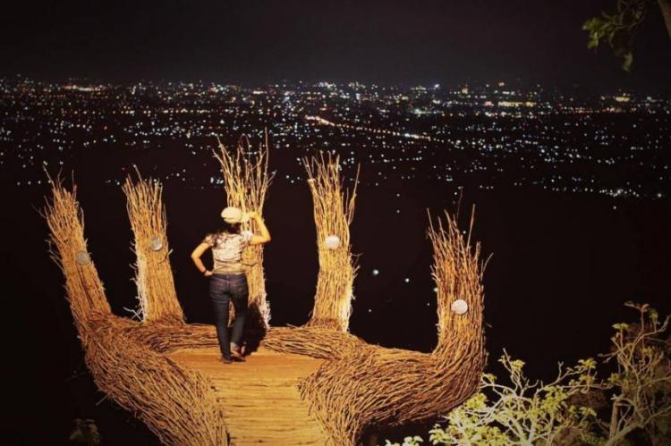Hutan Pinus Pengger Saat Malam Hari