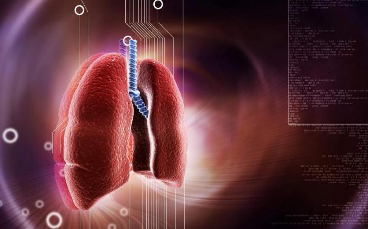 Jenis Penyakit Bronkitis